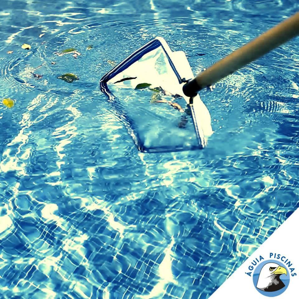 #Manutenção: Após a escovação e limpeza de todas as sujeiras agarradas nas paredes, bordas e fundo é hora de peneirar a água para retirar folhas, insetos e outras partículas em suspensão na água da piscina.